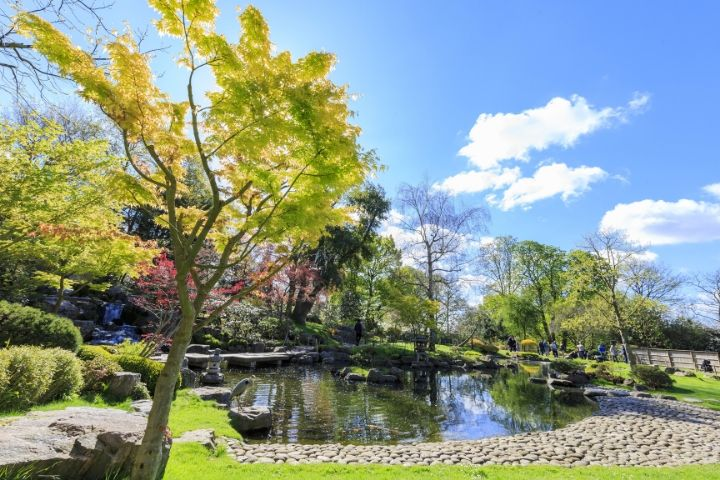 Enjoy the Kyoto Garden in London with SWR