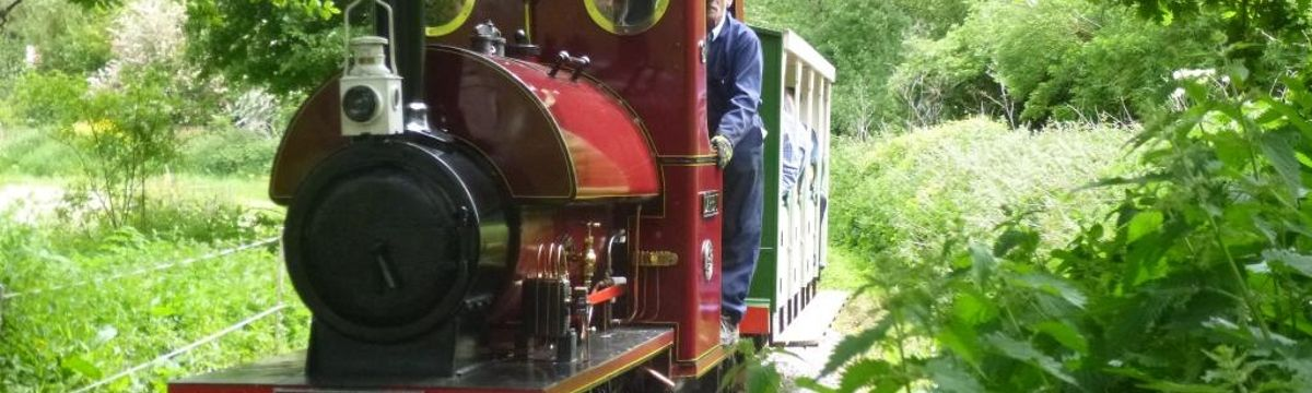 Visit the Hampton & Kempton Waterworks Railway with SWR